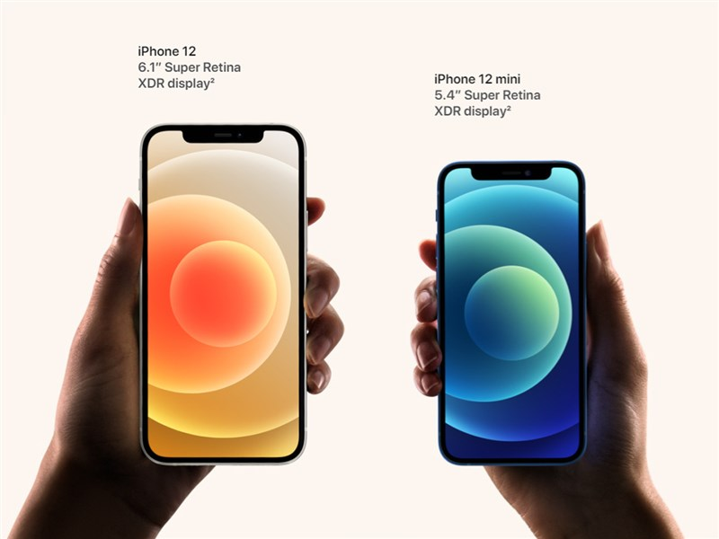 蘋果(Apple)發表4款新5G版iPhone,包括iPhone 12(左)、iPhone 12 mini(右)。(圖取自蘋果網頁apple.com)