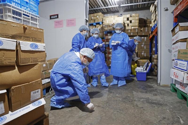 中國17日晚間表示,從工人搬運的進口冷凍鱈魚外包裝上驗出武漢肺炎活病毒。圖為上海疾管人員8月18日在冷凍倉庫採樣。(中新社)