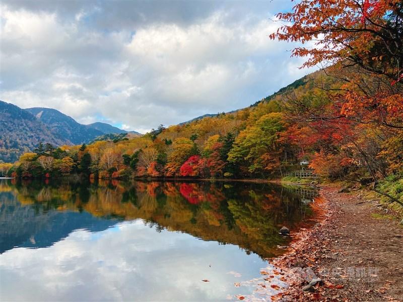 日本栃木縣奧日光湯之湖在入秋後,樹葉慢慢變色,黃、橙、紅色彩交織,渲染出秋天的景緻。(讀者JongJong Tzai提供)