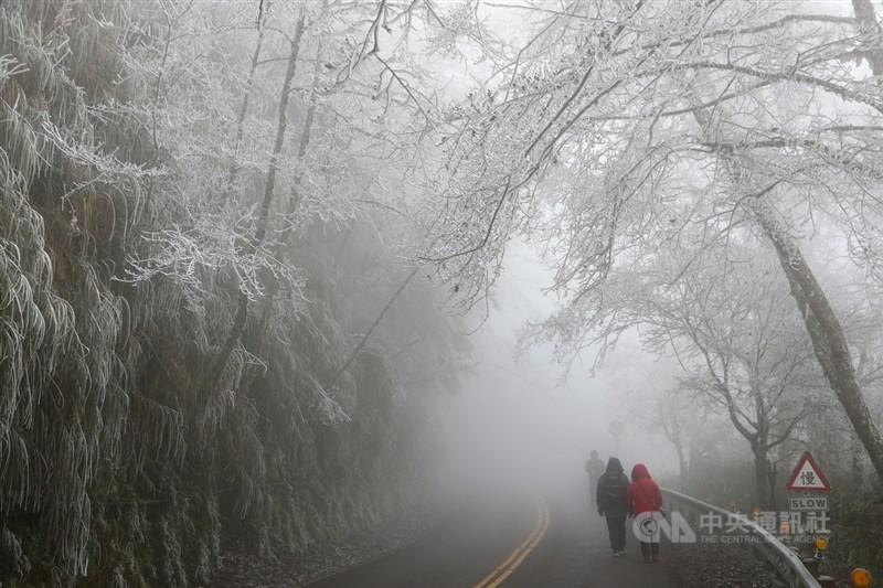 入冬首波寒流來襲,海拔約1900公尺的宜蘭太平山國家森林遊樂區12月31日中午11時許天空飄下冰霰,沿途道路旁山林結滿霧淞,山間風景一片雪白,美不勝收。中央社記者王騰毅攝 109年12月31日