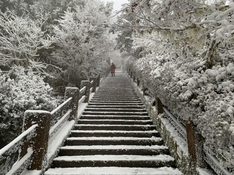 寒流來襲,海拔約1900公尺高的太平山國家森林遊樂區7日晚上開始下雪,山區一片雪白。(羅東林管處提供)中央社記者沈如峰宜蘭縣傳真 110年1月9日