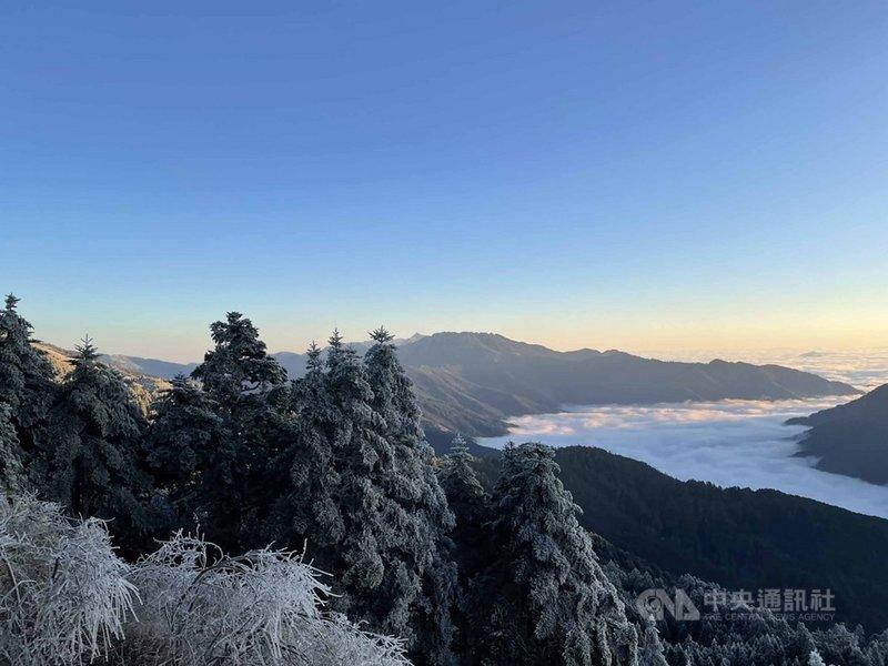 合歡山10日白天雖未降雪,但氣溫仍低,樹梢及山壁仍有殘雪結冰,隨著天氣放晴,高山雪景搭配湛藍天空更顯美麗。圖為合歡山區10日日出景觀。(民眾提供)中央社記者蕭博陽南投傳真 110年1月10日