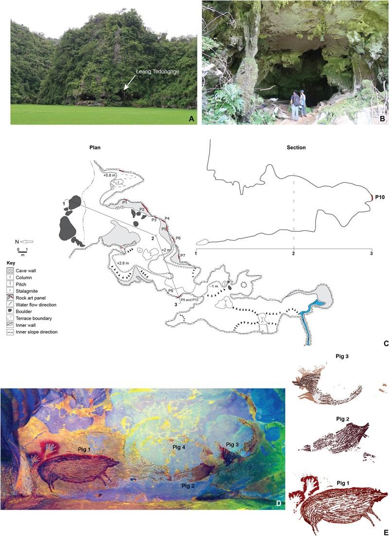 考古學家在印尼發現世界上最古老的洞穴壁畫。上圖為Leang Tedongnge洞穴口;中圖為洞穴地圖;下圖為壁畫。(圖取自科學先端網頁advances.sciencemag.org)
