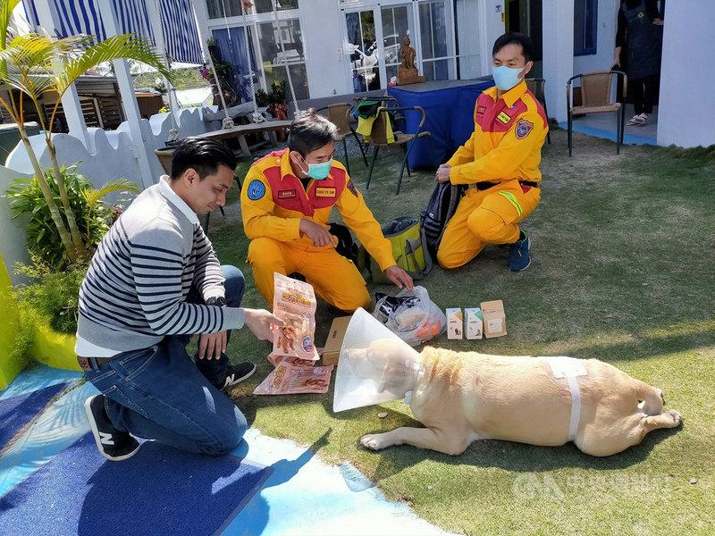 目前在台東生活的退役拉不拉多搜救犬「貝斯」意外遭2隻比特犬咬傷,「貝斯」的前主人、高雄市消防局特搜中隊小隊長陳志三(中)和隊友獲知後,第一時間趕到台東關心,為老戰友加油打氣。(戴永明提供)中央社記者盧太城台東傳真 110年2月20日
