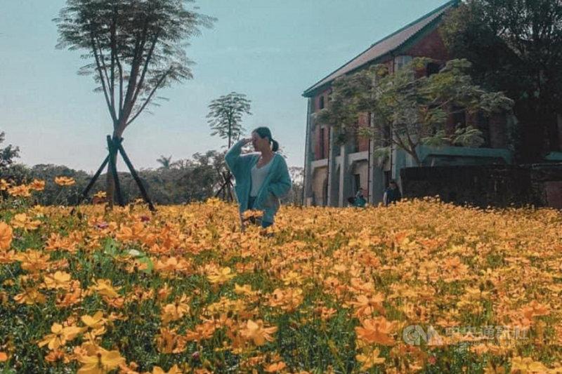 台南山上花園水道博物館在臉書粉專舉辦水道攝影趣活動讓民眾投稿,至今收到不少有創意的照片,活動徵集將至2月底為止。(台南市文化局提供)中央社記者楊思瑞台南傳真  110年2月25日