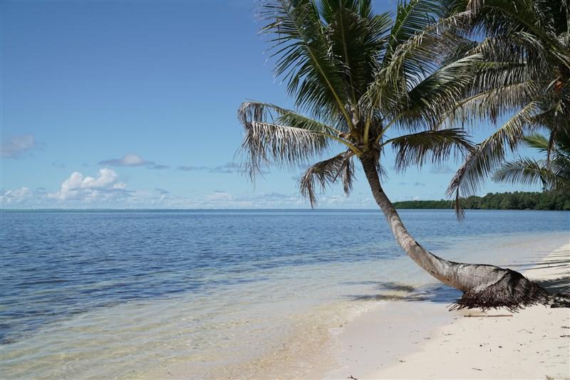 疫情指揮中心指揮官陳時中透露,未來推動帛琉旅遊泡泡,一定會大幅放寬檢疫規定。(圖取自facebook.com/officialpva)