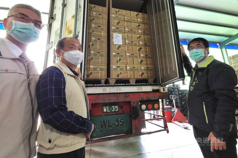 新加坡台商透過貿易公司採購25公噸台灣鳳梨準備銷往新加坡,首批10日在台南市楠西區裝櫃,台南市長黃偉哲(右)前往關心。中央社記者楊思瑞攝  110年3月10日