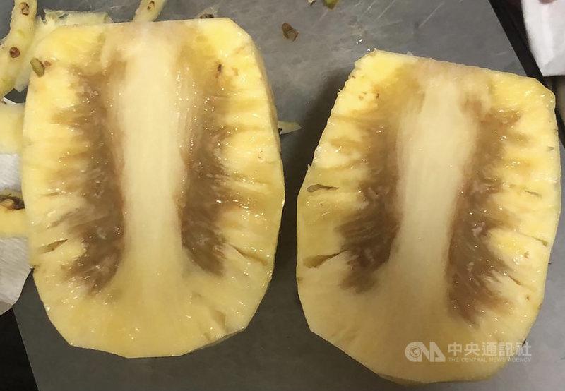 台灣鳳梨拓銷新加坡,但不少當地消費者買到內部出現褐色或黑色的鳳梨。圖為一名消費者近期在超市買到的台灣鳳梨。(讀者提供)中央社記者侯姿瑩新加坡傳真 110年4日2日