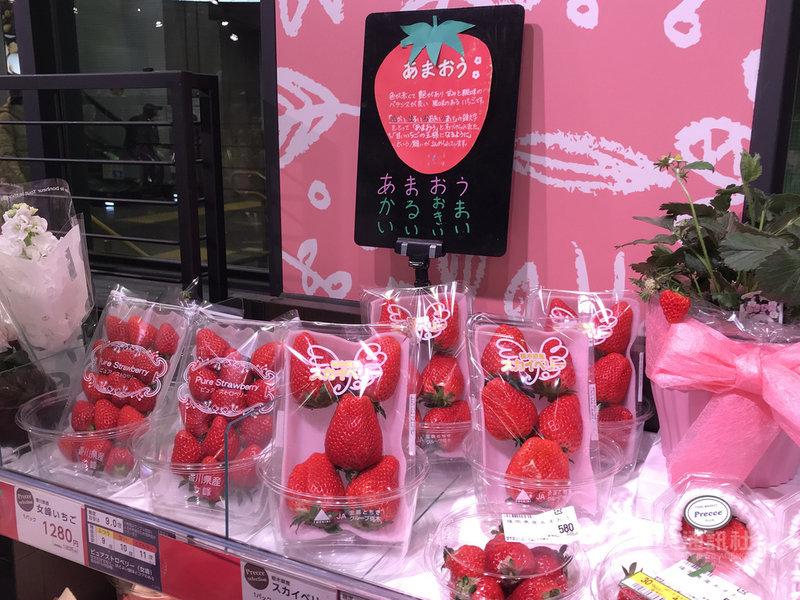 日本4月起實施新版的種苗法,農林水產省9日宣布不得攜帶出境的1975個種子或苗木品種名單,包括麝香葡萄、甘王草莓、天空莓等。中央社記者楊明珠東京攝 110年4月9日
