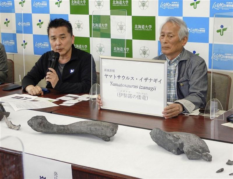 日本研究團隊從17年前挖掘出來的化石,發現跟鴨嘴龍科草食恐龍屬同類的新品種恐龍,研究團隊取「伊奘諾的日本龍」之意命名學名。(共同社)