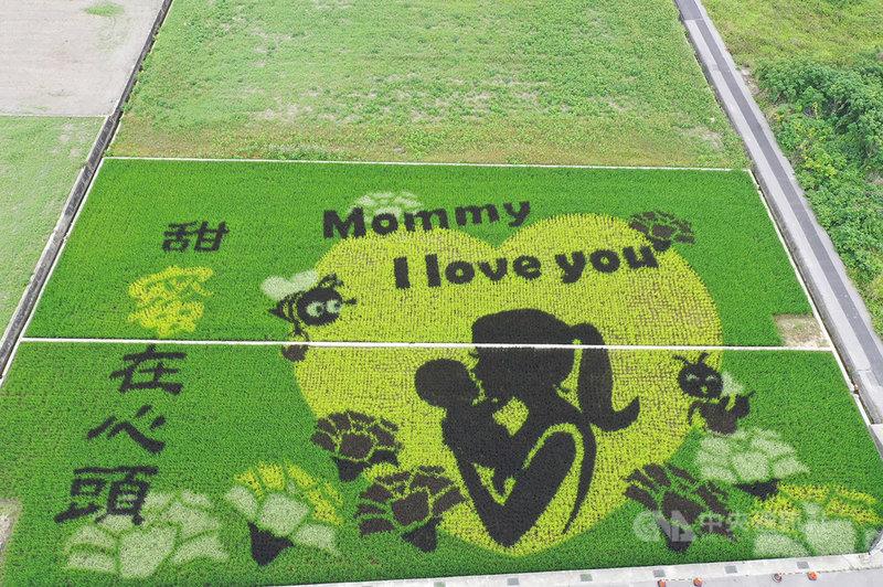 苗栗縣苑裡鎮農會著名的「稻田彩繪」換新裝,約2分地的田區內,利用紫色、黃色、白色、綠色、黑色等彩色秧苗構圖,除有Mommy I love you等字樣,圖案設計是在一個黃色大愛心襯托下,母親抱起嬰兒、周圍康乃馨綻放的溫馨模樣,洋溢滿滿母愛。(苑裡鎮農會提供)中央社記者管瑞平傳真  110年5月4日
