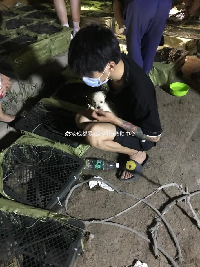 中國「寵物盲盒」事件層出不窮,3日再傳成都動保人士在一輛快遞物流車中,發現160隻被當作盲盒運送的貓犬,其中4隻已經死亡。(圖取自成都愛之家動物救助中心微博網頁weibo.com)
