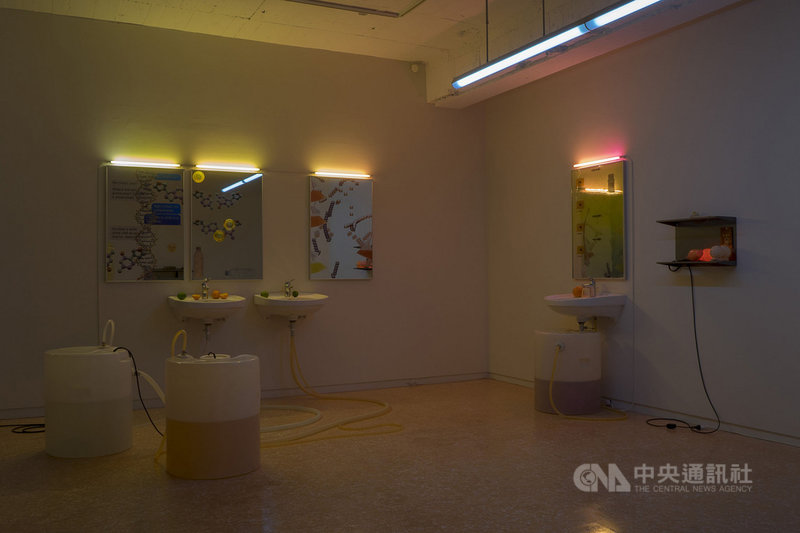 第11屆利物浦雙年展實體展覽將於19日開放參觀。台灣藝術家羅智信今年應邀參展。圖為他2019年作品「不存在的蝸牛」。(駐英文化組提供)中央社記者戴雅真倫敦傳真  110年5月14日