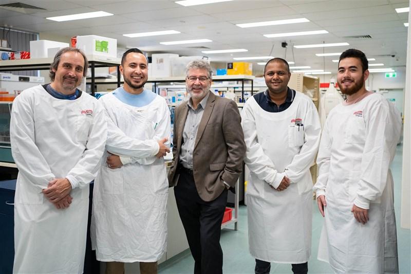 一支由澳洲及美國科學家組成的跨國研究團隊,研發出對抗COVID-19療程。(圖取自格里菲斯大學網頁news.griffith.edu.au)