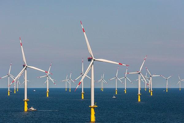 達德能源表示,為了避免允能風場專案破產,已獲經濟部核准引進法國道達爾集團,並降低達德在該專案的持股比例。(圖取自達德能源網頁wpd.tw)