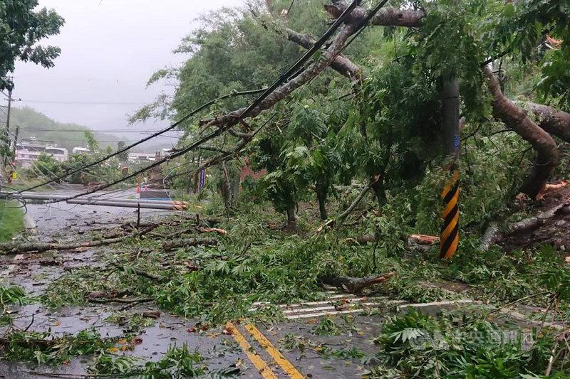 受到滯留鋒面影響,台南市從5日下午起出現間歇性大雨,並有多處路樹傾倒導致交通受影響情況,已派員加速處理。中央社記者楊思瑞攝  110年6月6日