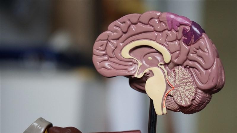 美國7日批准了治療阿茲海默症的藥物Aduhelm,這是將近20年來治療這種疾病的第一種新藥。(示意圖/圖取自Unsplash圖庫)