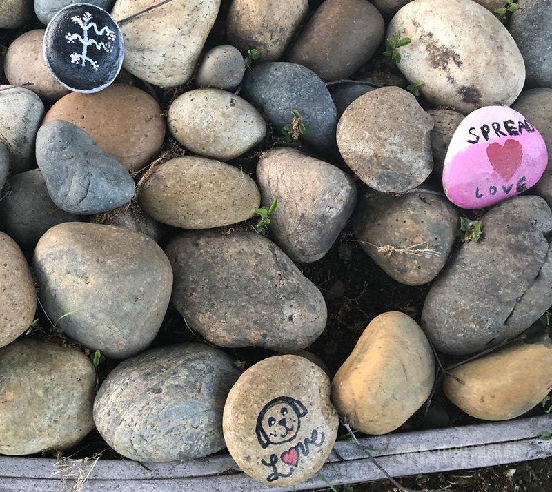 一顆彩繪的小石頭就可能鼓舞疫情隔離的人心。台裔資深心理醫師張馨方以「克服焦慮的ABC」,鼓勵人們「覺察」情緒、「深呼吸」調節、「選擇當下可以控制的事情」。中央社記者周世惠舊金山攝 110年6月13日