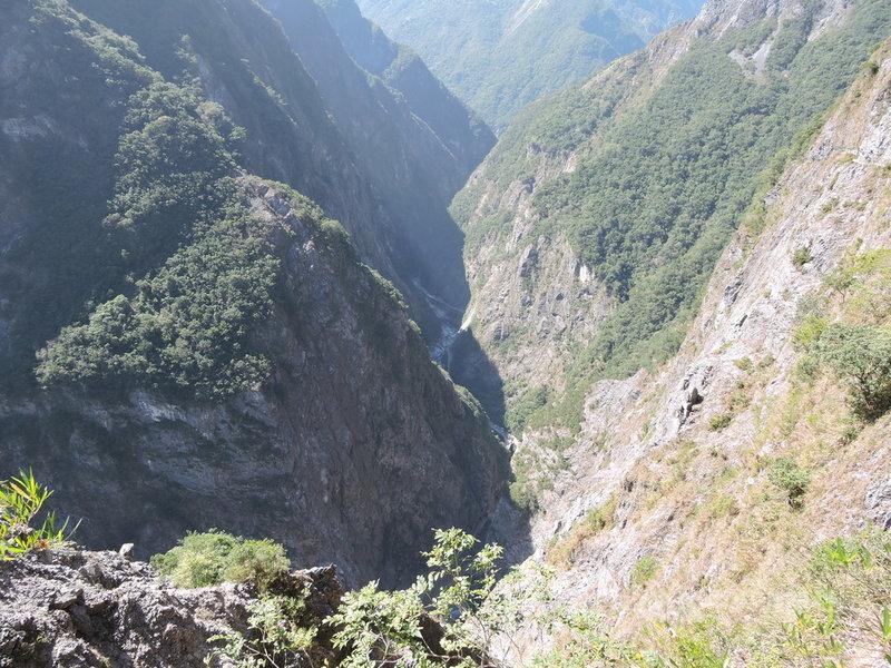 太魯閣的峽谷與高山地形,對許多植物的生長及傳播是跨越不過的鴻溝,形成天然的阻隔,因此許多植物便在小區域的範圍中長期演化,逐漸演化出太魯閣的特有植物。中央社記者李先鳳攝  110年6月14日