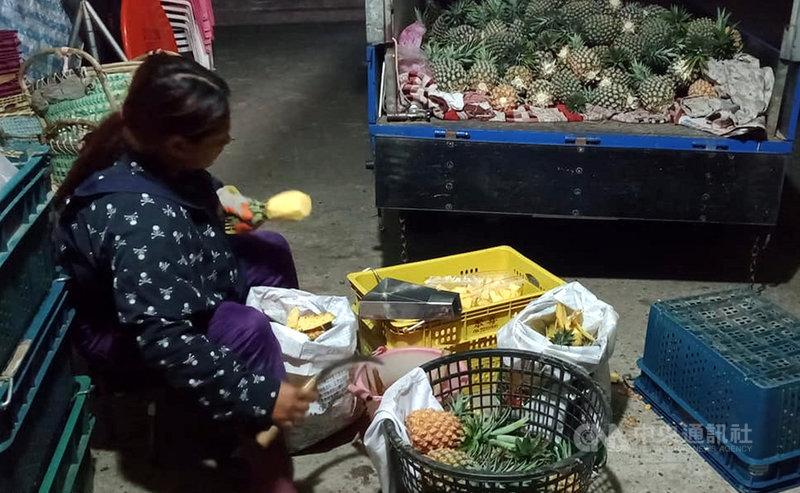農委會農糧署東區分署1日表示,疫情改變消費者採購農產品型態,台東鹿野地區農會及成功鎮農會採取產地直銷,利用線上銷售鳳梨,直接將鳳梨鮮果宅配到消費者手中,讓民眾安心在家防疫,不出門也能享用美味鳳梨,同時支持台東農民及台灣農業。中央社記者盧太城台東攝  110年7月1日