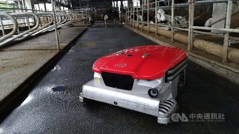 畜試所導入全亞洲首款吸糞機器人 為酪農省人力