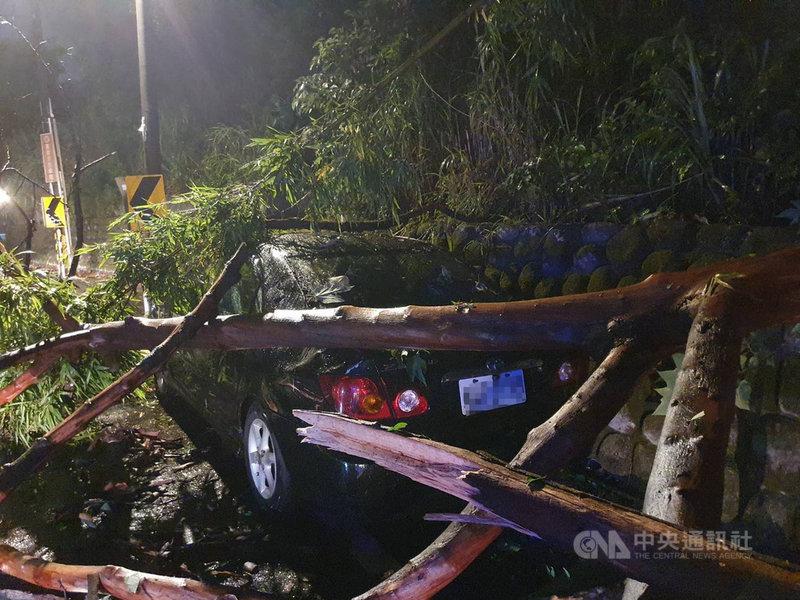 颱風烟花逼近,桃園市21日晚間開始降雨,龜山區有路樹因土石鬆軟倒塌、壓毀路邊車輛。(警方提供)中央社記者葉臻傳真 110年7月22日