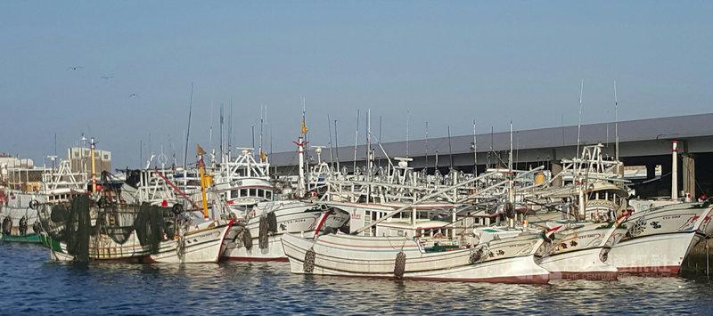 受颱風外圍環流影響,澎湖海域22日一度出現10級強陣風,在附近作業的船隻紛紛進港避風。中央社  110年7月22日