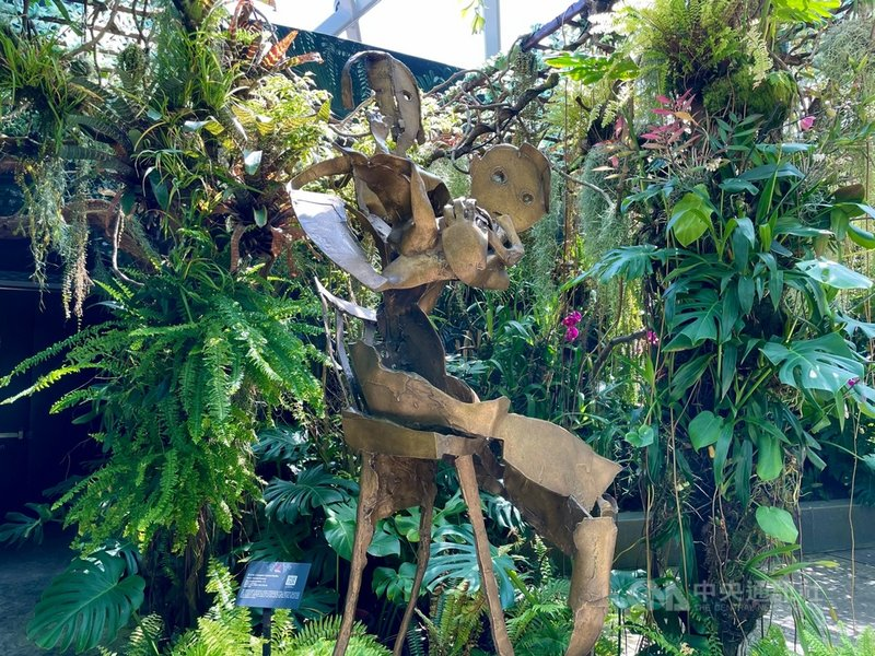 新加坡濱海灣花園雲霧林展出16件台灣雕塑家李光裕的作品,包括「心子」(圖)等銅雕。個展深受歡迎,連總理李顯龍也PO文分享。攝於7月22日。中央社記者侯姿瑩新加坡攝 110年7月26日