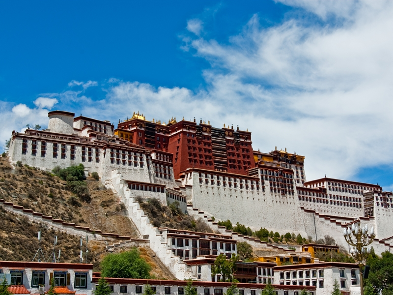 西藏抗暴60週年