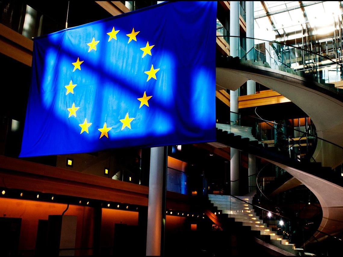 歐洲議會選舉