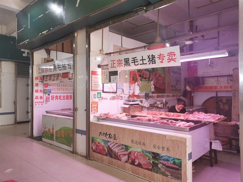 中國非洲豬瘟專題