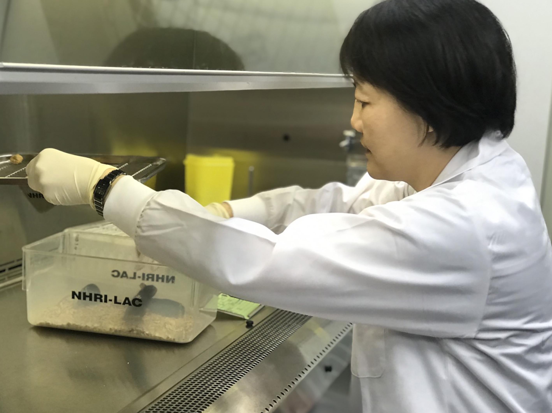 武漢肺炎疫苗