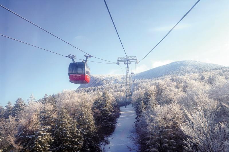 於藏王山麓站可轉搭小型纜車,前往山頂。