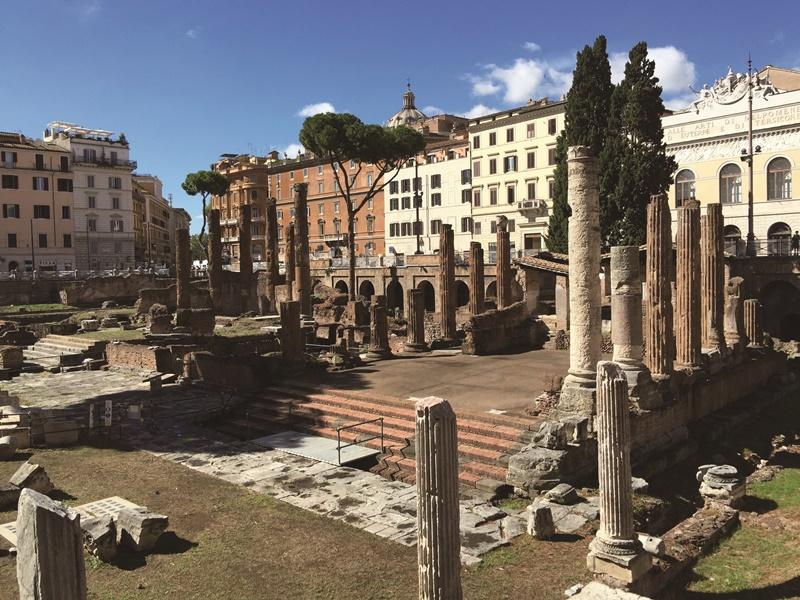 羅馬銀塔廣場古蹟區是羅馬最知名的流浪貓集散地。(中央社黃雅詩)