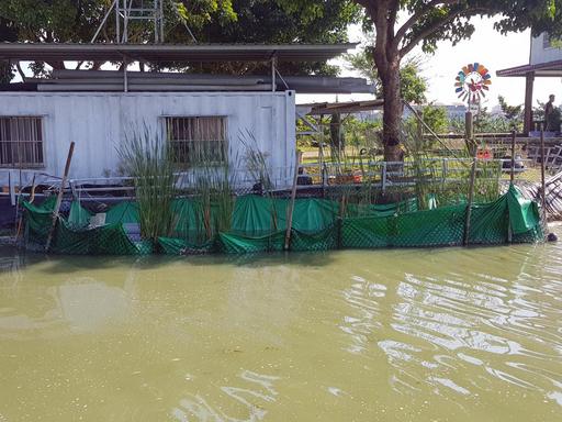 環管系錢紀銘老師發明的水質淨化系統,成本低操作簡單,為養殖業者提供更多幫助