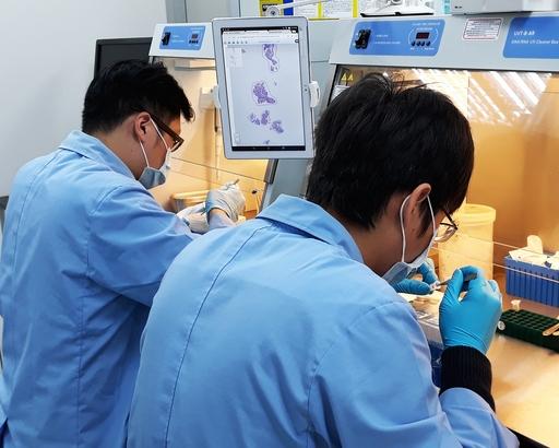 圖說: 實驗室人員使用特殊放大鏡輔助刮取(Macrodissection)的方式處理癌症組織周圍常伴隨的正常組織。行動基因/提供