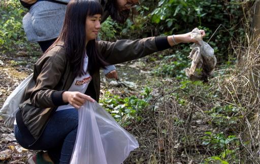 CGM志工團希望喚醒國人「愛護森林」的環境意識