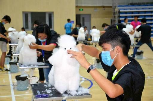 「兩岸大學生職業技能大賽-寵物美容競賽」