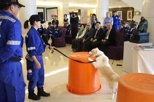 台灣精英國際搜救協會搜救犬示範搜索受困民眾