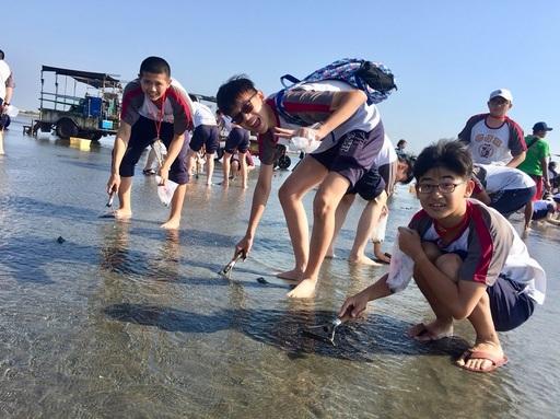 及人國中部學生來到彰化西部海岸,開心地跳上在地最具特色的「採蚵車」出遊,前往王功漁港一望無際的潮間帶沙地,除了復育中的蚵田景象壯闊,還有非常豐富的野生蛤蠣,只見學生一個個俯身伸手往水底像尋寶似地到處摸蛤,真正是親身體驗了海洋生態的魅力。