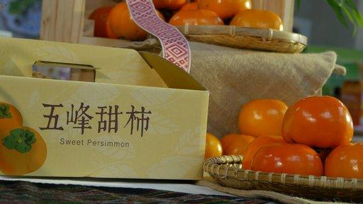 身為甜柿節系列活動之一,雪霸森林超馬會場將設有10攤甜柿專攤,歡迎到攤位品嚐五峰甜柿。(照片來源:五峰鄉甜柿節FB粉絲專頁)