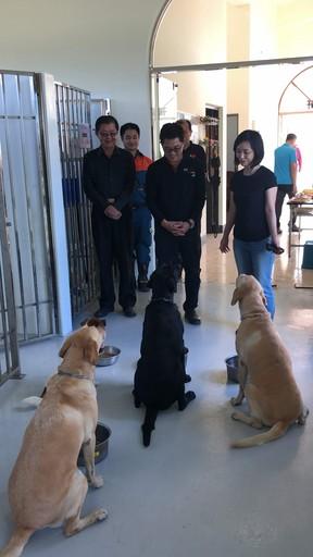 狗年歲末,台東縣黃健庭前縣長賢伉儷為搜救犬們帶來驚喜
