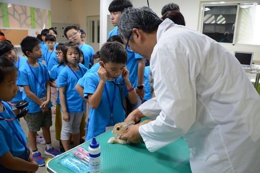 國小小朋友看到元培老師們介紹且進行為竉物聽診