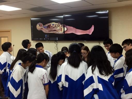 高中學子圍觀設置在長庚大學臨床技能與模擬中心的「數位解剖台」,大家所見內容如牆上螢幕所示。