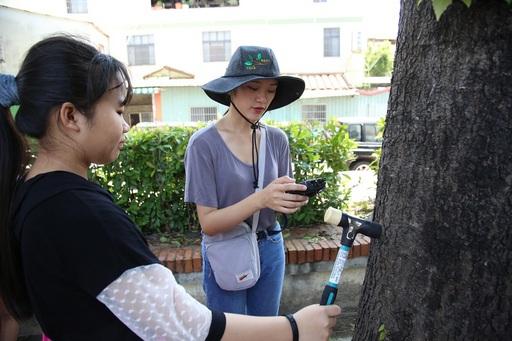 愛護樹木在地環境攜手行動移除入侵植物