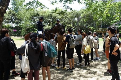 圖說四:觀光騎警隊每年都有大批粉絲