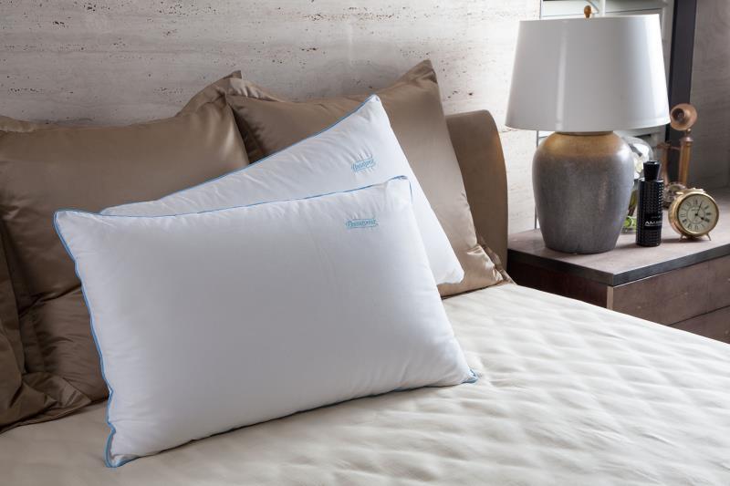 睡眠商機夯,機能枕熱門
