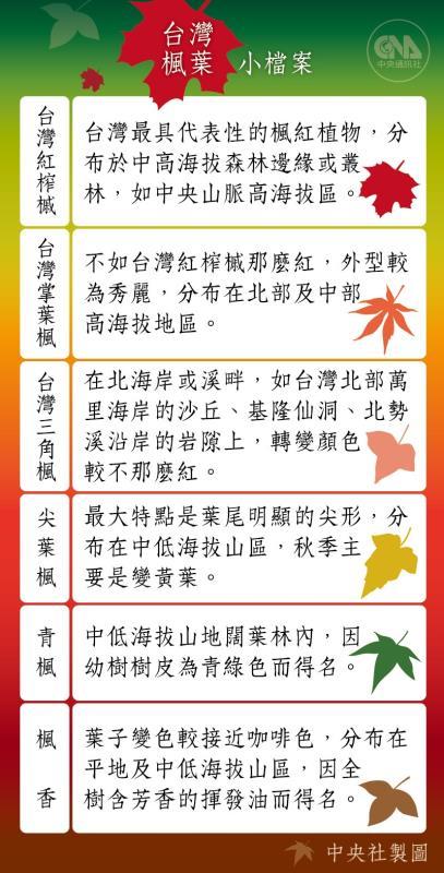 台灣賞楓景點大公開 打卡賞楓看這裡【互動地圖】