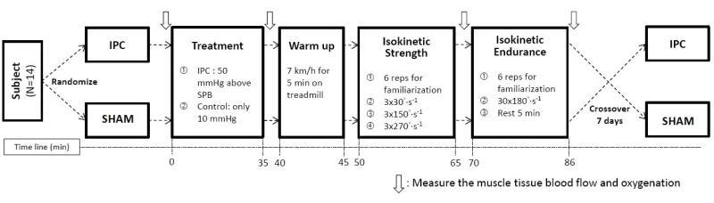 非運動員經IPC介入探討肌肉組織血流量及肌肉功能研究流程