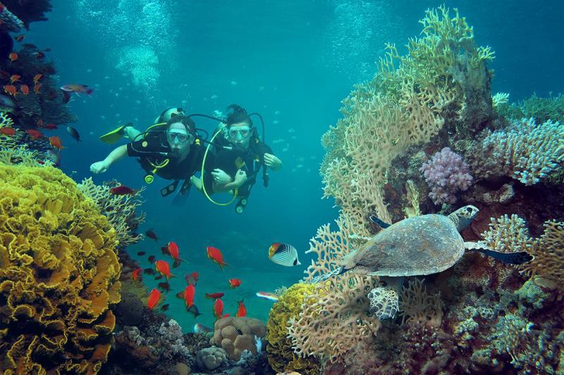 帛琉泡泡成形,遠傳推漫遊早鳥優惠。
